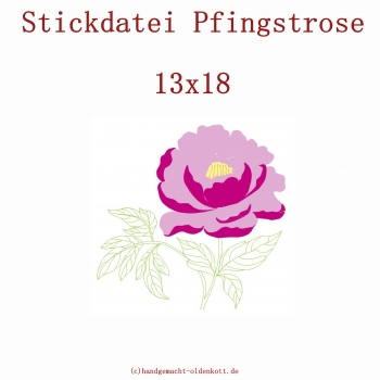 Stickdatei Pfingstrose 13x18