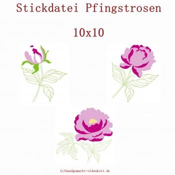 Stickdatei Pfingstrosen 10x10